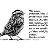 Sparrow Drawing with Scripture