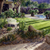 Palm Springs backyard