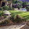 Palm Springs backyard