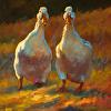 Dawdling Ducks