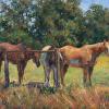 Horses by Bill Kalwick