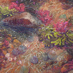 Betsy Payne Cook - PSNH 11th National Juried Show
