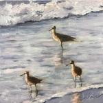 Ann Hair - Smithsonian Exhibit - Shore Birds