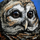 Watchful Eyes, 01409 by Carol Nelson Oil ~ 4 x 4