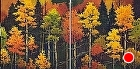 Autumn Palette by Carol Nelson Oil ~ 20 x 40