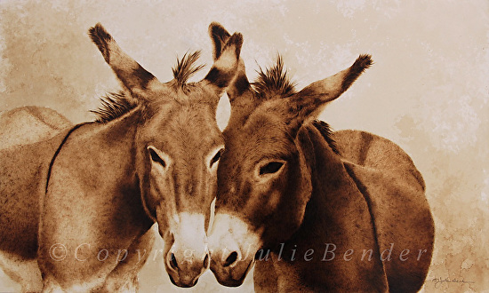 Confidentially Speaking (donkeys) - Pyrography and coffee