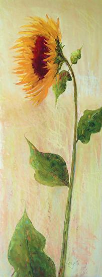Sunny - Pastel