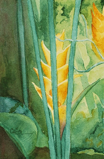 "Heliconia by Diane Cutter Watercolor ~ 6"" x 4"""