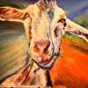 Gretta the goat