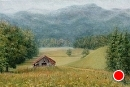 Before the Barn Fell     Cades Cove by Susan S. Birdwell Oil ~ 24 x 36