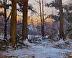 Woodland Dusting by Paul Bachem