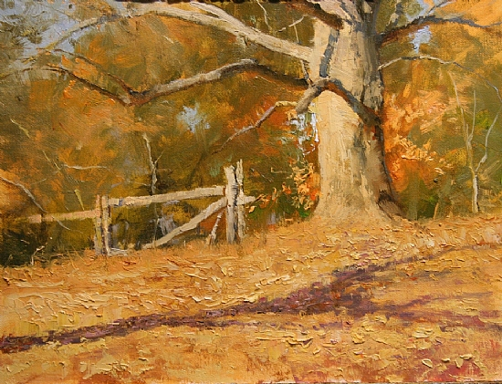 November Lindens by Paul Bachem Oil ~ 9 x 12