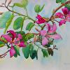 Bauhinia Blakeana, (Hong Kong Orchid) Plein Air Painting