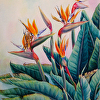 Bird of Paradise, published in The Watercolor Flower Artists Bible