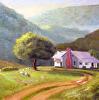 Tennessee Sheep Farm