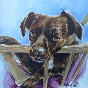 Pet Portrait by Sarah Madsen Acrylic ~ 24 x 24