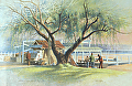 williams bay, lake geneva by Tom Heflin lithograph print ~ 16 x 20