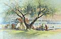 williams bay, lake geneva by Tom Heflin lithograph print ~ 16 x 20
