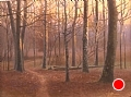 sunrise at mink track by Tom Heflin Oil ~ 16 x 20