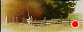 emmerts fenceline by Tom Heflin Acrylic on Crushed Paper ~ 24 x 48