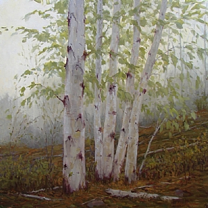 Acadia Birch by Kathleen Dunphy Oil ~ 36 x 36