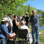 Kathleen Dunphy - Capturing the Light! Plein Air in Murphys, CA - Sold out!