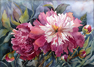 Peoney Passion by Yvonne Hemingway Watercolor ~ 9.75