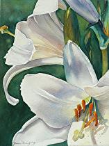 "EasterLiliesFinal by Yvonne Hemingway Watercolor ~ 20"" x 16"""