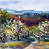 Spring at Sholan Orchards