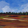 Blueberry Barrens 1