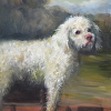 Copy of Poodle in a Punt by George Stubbs