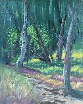 Light in the Woods - Oil
