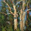 KilnerArt_Eucalyptus Afternoon Winter Light_6x8_Nov 2014