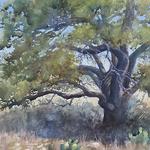Susan Lynn - Landscape in Watercolor special online demo