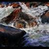 Poudre River 1