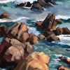 Pacific Grove Rock Study