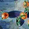 Clementines:Horizontal