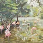 Alison McCauley - Florida Wild