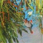 Joseph Sundwall - Flora and Fauna