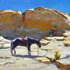 Desert Sentry