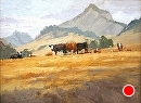 SLO Cows by Jim Wodark Oil ~ 12 x 16
