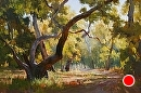 Sycamore Grove by Jim Wodark Oil ~ 24 x 36