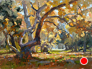 Golden Light by Jim Wodark Oil ~ 12 x 16
