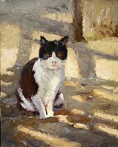 Beach Cat by Jim Wodark Oil ~  x