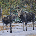 Debbie Hughbanks - Montana Miniatures