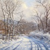A Fine Day in Winter