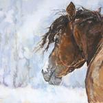 Jan Miller - Pastel Society of North Carolina