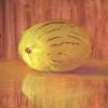 110 Pepino-Melon 4-17-15