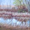 111 Marsh-on-179th 4-18-15