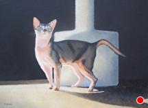 """Martha's Cat by Pat Quinn Oil ~ 18"""" x 24"""""""